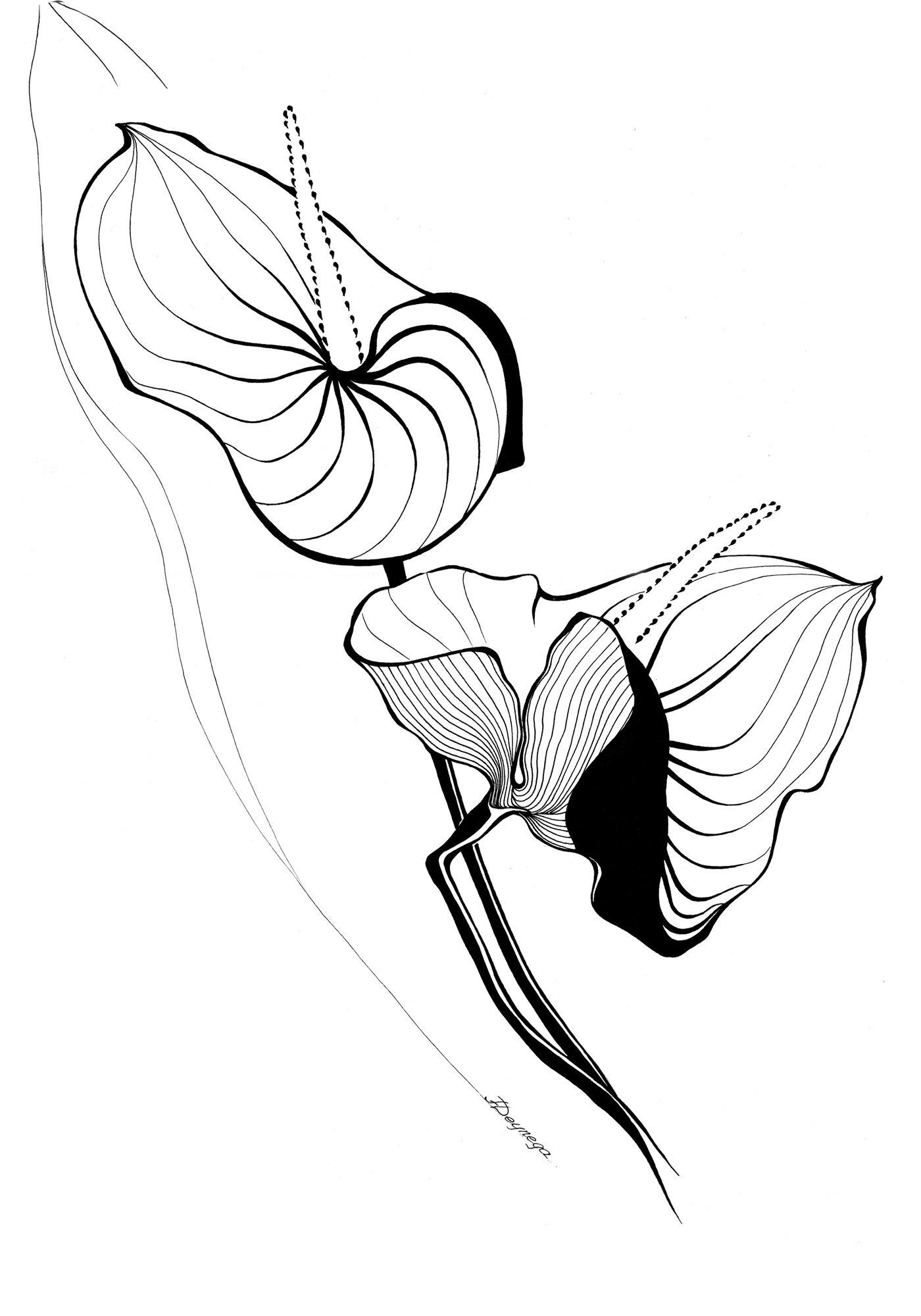 Die Blume II, Tusche (43x61cm)